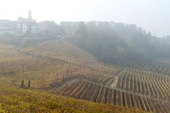 Autumnal landscape of vines and hills in Langhe, Northern Italy Stock Photo