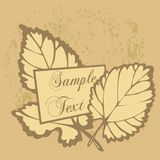 Autumnal leaf background Stock Photography