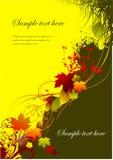 Autumnal leaf background Royalty Free Stock Photo