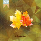 Autumnal leaf background made of triangles. Autumnal leaf background made of triangles Retro background. EPS10 Royalty Free Stock Photography