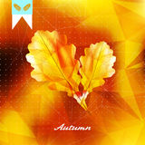 Autumnal leaf background made of triangles. Royalty Free Stock Image