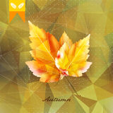 Autumnal leaf background made of triangles. Autumnal leaf background made of triangles Retro background. EPS10 Royalty Free Stock Image
