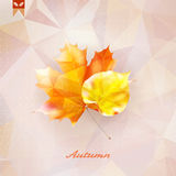 Autumnal leaf background made of triangles. Royalty Free Stock Photography