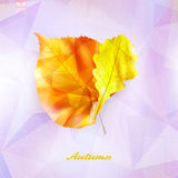 Autumnal leaf background made of triangles. Stock Photography