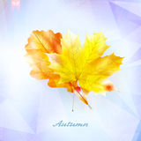 Autumnal leaf background made of triangles. Royalty Free Stock Images