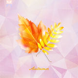 Autumnal leaf background made of triangles. Stock Photos