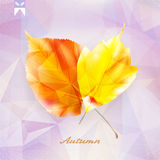 Autumnal leaf background made of triangles. Stock Photo