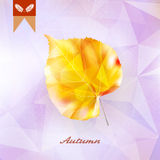 Autumnal leaf background made of triangles. Autumnal leaf background made of triangles Retro background. EPS10 Stock Image