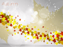 Autumnal leaf background, vector illustration Stock Images