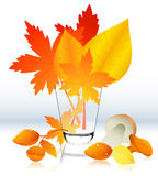Autumnal leaf in the glass Stock Photography