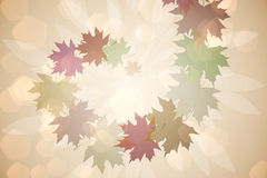 Autumnal leaf pattern in warm tones Stock Photos
