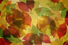 Autumnal leaf pattern in warm tones Stock Image