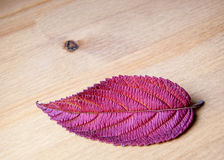 Autumnal leaf on wooden background. Royalty Free Stock Image
