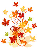 Autumnal leaves. Background for thanksgiving or seasonal design Royalty Free Stock Images