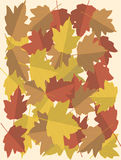 Autumnal leaves background Royalty Free Stock Photos