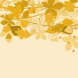 Autumnal leaves background. Autumnal leaves on colorful background for seasonal design stock illustration