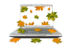 Autumnal leaves falling out of computer Royalty Free Stock Image