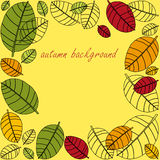 Autumnal leaves frame Stock Images