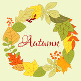 Autumnal leaves frame with berries and seeds Stock Photography