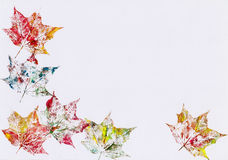 Autumnal leaves frame Stock Image