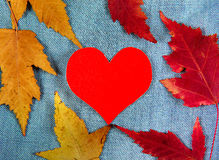 Autumnal Leaves and Heart Stock Photo