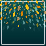 Autumnal Leaves. Illustration of an Autumn Design with Autumnal Leaves Stock Photos