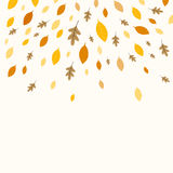 Autumnal Leaves. Illustration of a Fall Background Design with Autumnal Leaves Stock Images