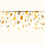 Autumnal Leaves. Illustration of a Fall Background Design with Autumnal Leaves Stock Photos
