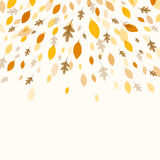 Autumnal Leaves. Illustration of a Fall Background Design with Autumnal Leaves Stock Photography