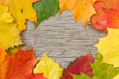 Autumnal  leaves over wooden background Royalty Free Stock Photo