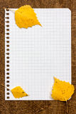 Autumnal leaves on the paper page notebook Royalty Free Stock Image