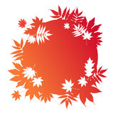 Autumnal leaves on red frame Stock Images