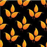 Autumnal leaves seamless pattern Stock Photography
