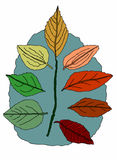 Autumnal leaves on white background. Vector illustration, drawing made with bamboo pen intuos Royalty Free Stock Photos