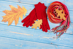 Autumnal leaves, womanly woolen gloves and shawl, clothing for autumn or winter. Womanly woolen gloves, colorful shawl and autumnal leaves on boards, warm Stock Photo