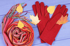 Autumnal leaves with gloves and shawl for woman, womanly clothing for autumn or winter. Autumnal leaves with woolen gloves and colorful shawl for woman on boards Royalty Free Stock Images