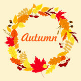 Autumnal leaves wreath with acorns Royalty Free Stock Images