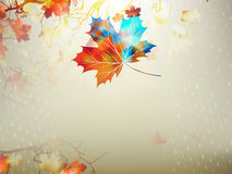 Free Autumnal Maple Leaf Made Of Triangles. EPS 10 Stock Photo - 42407890