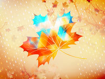 Autumnal maple leaf made of triangles. EPS 10 Stock Photography