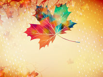 Autumnal maple leaf made of triangles. EPS 10 Royalty Free Stock Images