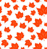 Autumnal Maple Leaves, Seamless Background Stock Photography
