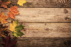 Autumnal maple leaves on the wooden table with film filter effect background Royalty Free Stock Image