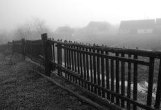 Autumnal melancholy Stock Photos