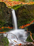 Autumnal mood in the forest with small creek waterfalls. Long exposure shot with blurred silky water stream stock photos