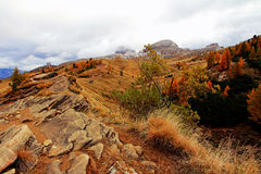 Autumnal mountain landscape with rocks in the Dolomites Stock Images
