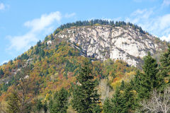 Autumnal mountain scenery Royalty Free Stock Photos