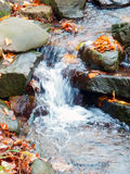Autumnal mountains creek detail Stock Image