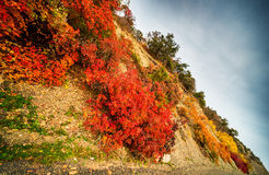 Autumnal mountains Royalty Free Stock Photography