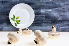 Autumnal Mushrooms with white background and gray wooden table and empty dish Royalty Free Stock Photo
