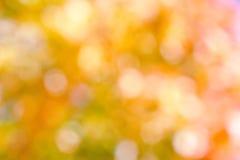 Autumnal natural background Stock Photos
